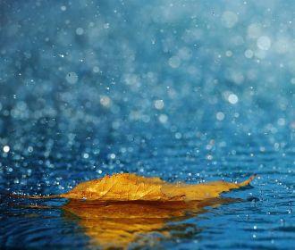 В ближайшие сутки ожидается повышенная влажность