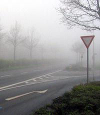 Поверхности дорог производят озон