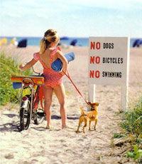 В Киеве закрыли все пляжи