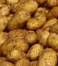 Щитовидку и гипертонию вылечит картофельный сок