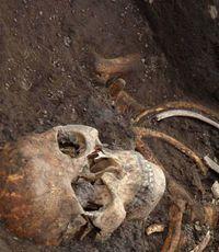 У шалаша в Разливе, где Ленин прятался от буржуазии, нашли скелет