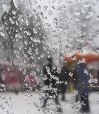 Мокрый снег и дожди пройдут во многих регионах Украины