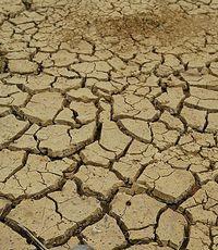 Китай страдает от засухи