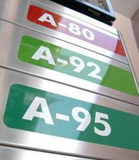 Водоросли заменят нефть?