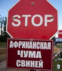 С начала года в Украине зафиксировано 19 случаев АЧС