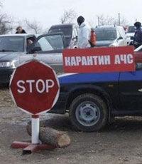 В Крыму ввели режим ЧС из-за африканской чумы свиней