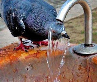В Украине будет сухо и жарко