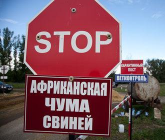 Вспышка АЧС зарегистрирована в Николаевской области