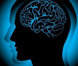 Особый полимер позволит вживлять имплантаты в головной мозг