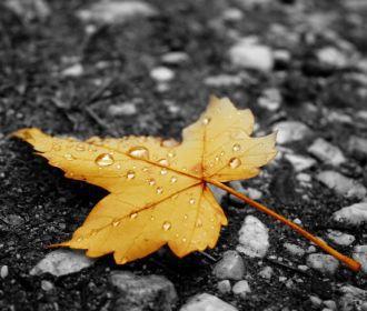 В Украине холодает, на востоке ожидаются дожди
