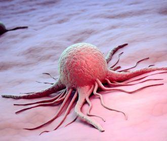 Яд скорпиона подарил лекарство против рака
