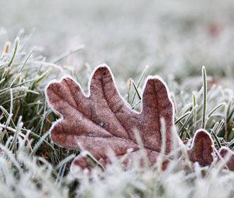 Сентябрь завершается прохладой и ночными заморозками