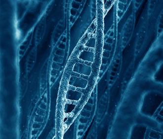 Генетики рассказали, какие элементы ДНК толкают людей к суициду