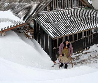 Впервые за 140 лет метеорологическая зима так и не наступила, - обсерватория