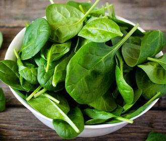 Биологи научили шпинат находить взрывчатку