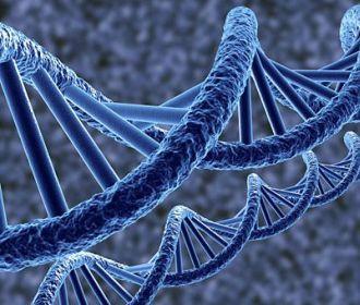 Особые мутации в геноме могут толкать человека на риск