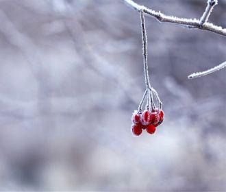 Ночные морозы удержатся во многих областях Украины
