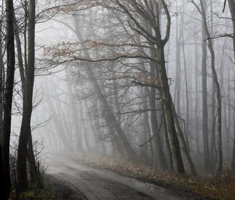 В ближайшие дни погода в Украине не изменится