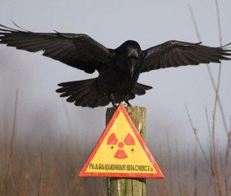 Зеленский: Украина будет развивать атомную энергетику