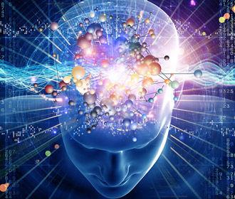 Мозг - определяющий фактор в наборе веса