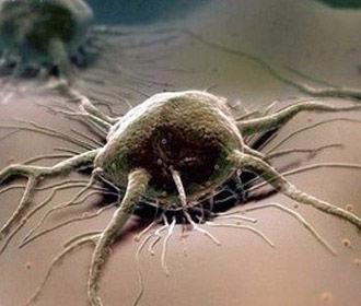 Найдена причина возникновения катастрофического рака