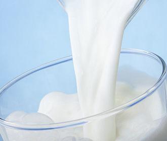 Ускорить процесс снижения веса возможно в два раза, если пить молоко