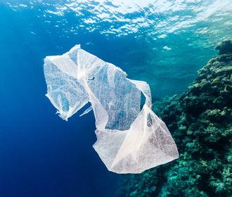 В Японии создают пластик, растворяющийся в океане