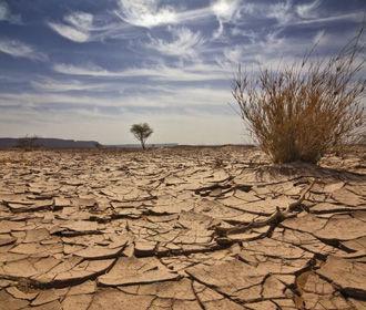 Предсказано наступление катастрофической жары