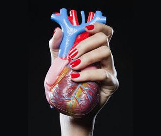 Найден способ укрепить сердце и продлить жизнь