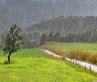 Кратковременные дожди и грозы ожидаются на Украине