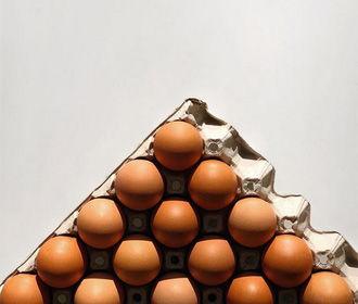 «Полезная программа»: как выбрать яйца?