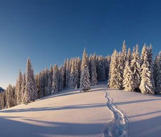 В Карпатах нашли 4 заблудившихся сноубордистов