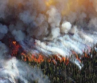 Дым сибирских пожаров достиг США и Канады - NASA