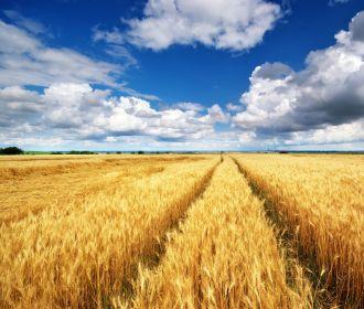 Минэкономики внедряет систему мониторинга оборота земель