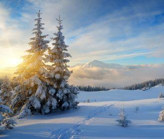 В последний день января воцарится пасмурная погода с осадками