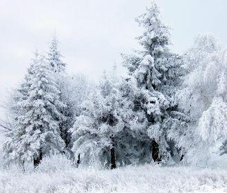 Циклон принесет снег и метели на запад Украины