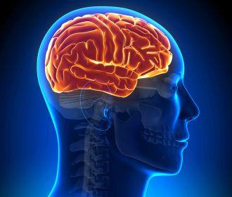 Коронавирусная инфекция грозит реальным поражением головного мозга