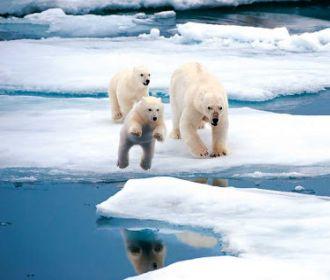 В Тихоокеанской Арктике зафиксировано первое за 20 лет похолодание