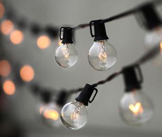 Литва, призывавшая Киев не брать электричество у Минска, увеличила импорт белорусской электроэнергии