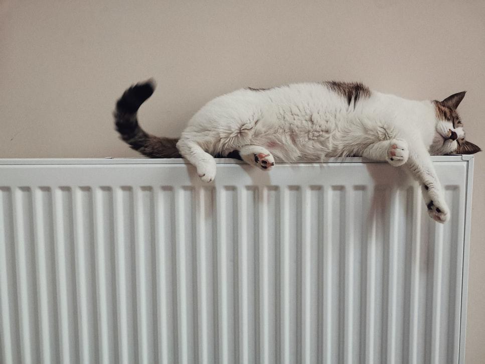 радиатор для отопления