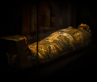 Древней мумии сделали МРТ