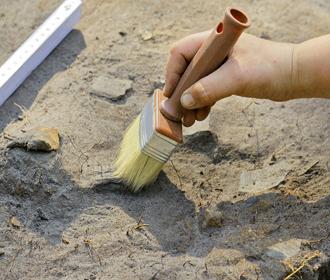 В Китае нашли кость динозавра, которой 200 млн лет